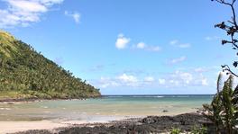 Plage et cocoteraie, Grande Comore © Cirad - Shannti DINNOO