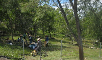 Restoration of community lands by the Rodrigues project.